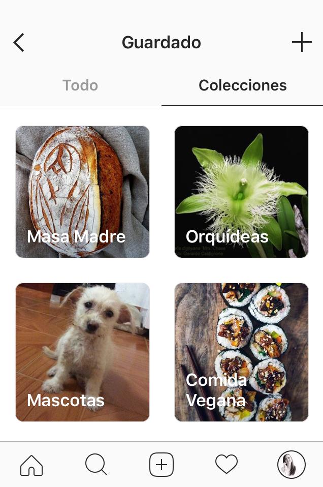 Colecciones de instagram for Colecciones en red